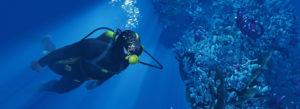 Week-end plongée Hyeres, octobre 2021
